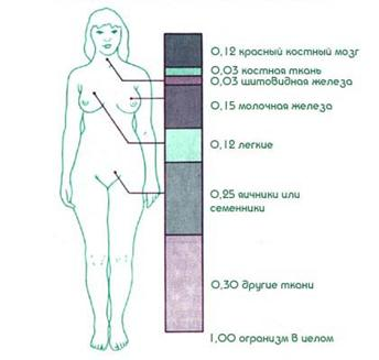 1. Дозы и единицы их измерения